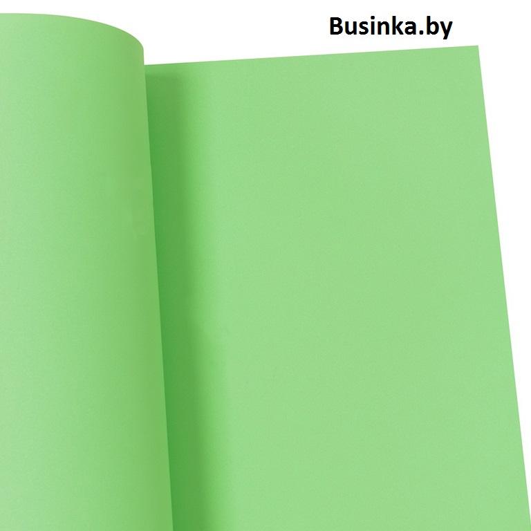 Фоамиран 1 мм 29*34 см светло-зелёный №1 (1 шт), Иранский